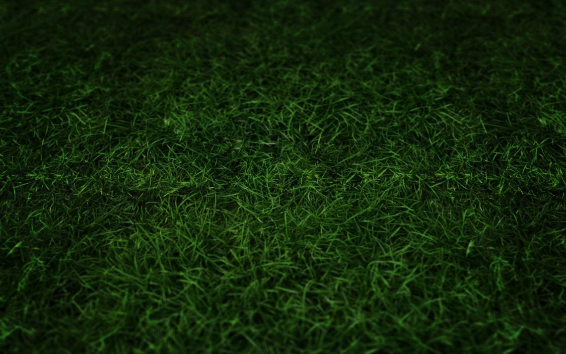 green grass football field animation football field grass wallpaper green grass 1280800 wallpaper 1280x800 nagios