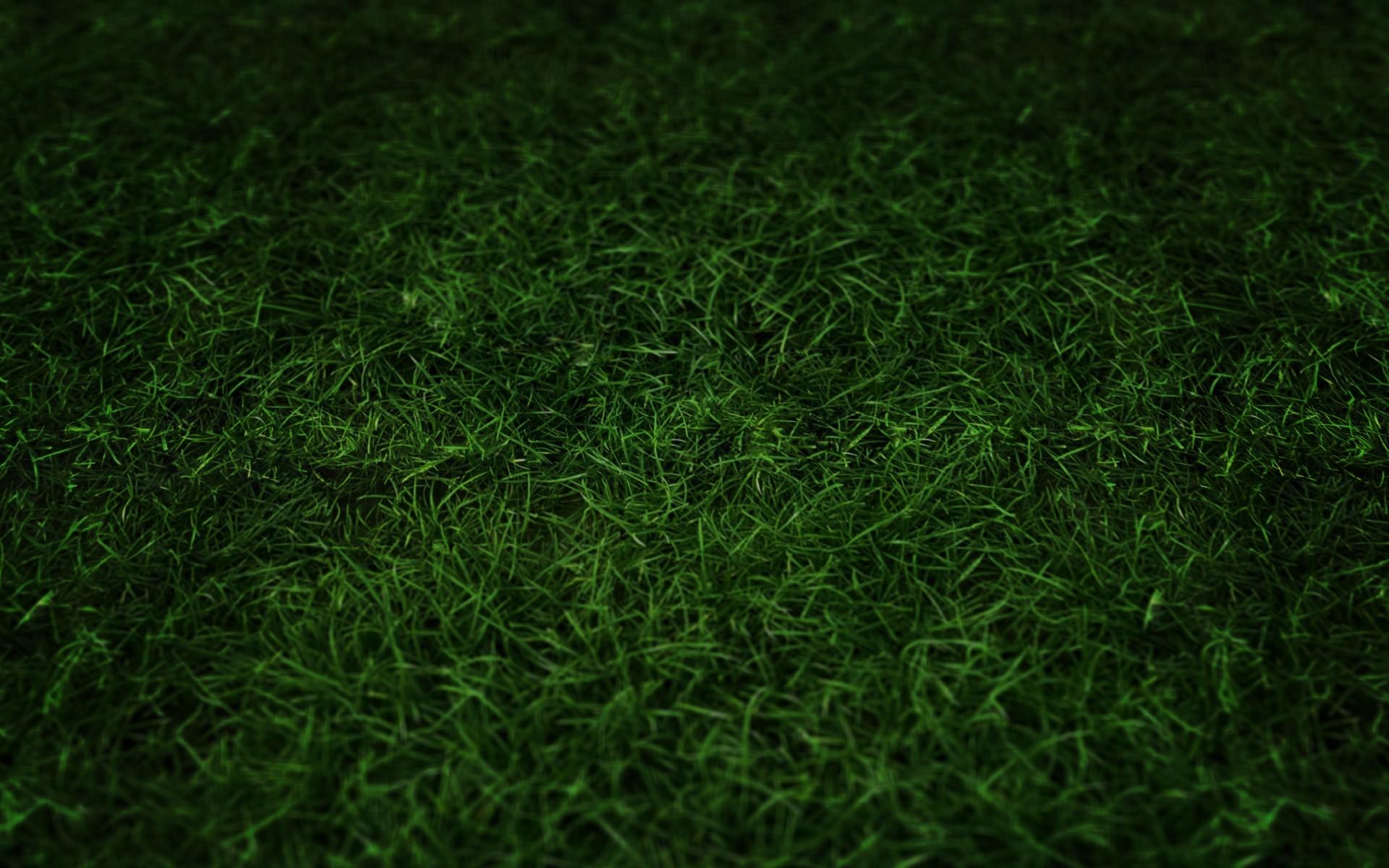 Football Field Grass Wallpaper Green Grass 1280x800 Wallpaper Nagios